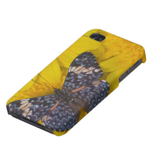 Sammamish Washington Photograph of Butterfly 43 iPhone 4 Cases