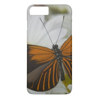 Sammamish Washington Photograph of Butterfly 50 iPhone 8 Plus/7 Plus Case
