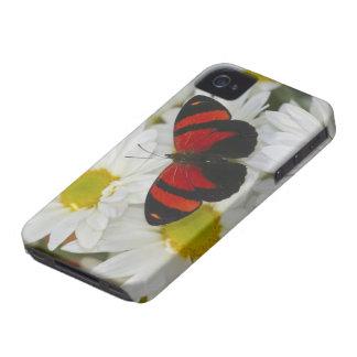 Sammamish Washington Photograph of Butterfly 51 iPhone 4 Case