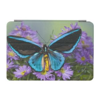 Sammamish Washington Photograph of Butterfly 52 iPad Mini Cover