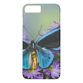 Sammamish Washington Photograph of Butterfly 52 iPhone 8 Plus/7 Plus Case