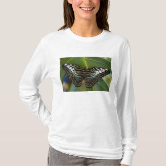 Sammamish, Washington Tropical Butterfly 22 T-Shirt