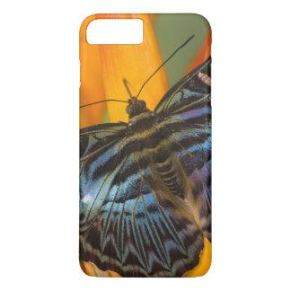 Sammamish, Washington Tropical Butterfly 24 iPhone 8 Plus/7 Plus Case