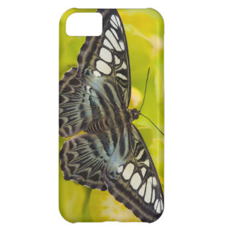 Sammamish, Washington Tropical Butterfly 38 iPhone 5C Case