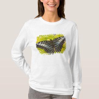 Sammamish, Washington Tropical Butterfly 38 T-Shirt