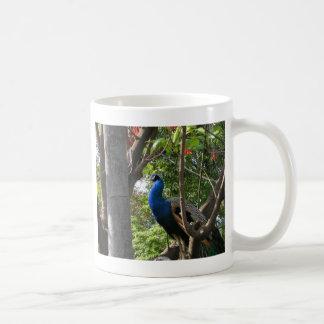 San Diego Zoo Peacock Coffee Mug