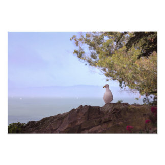 San Francisco Bay Print Art Photo