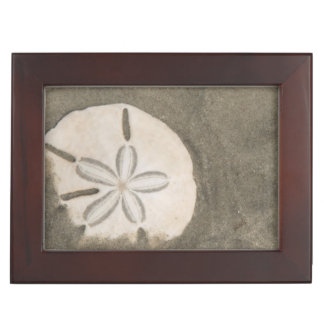 Sand dollar (Echinarachnius parma) Keepsake Boxes