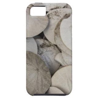 Sand dollars sea shell tough iPhone 5 case
