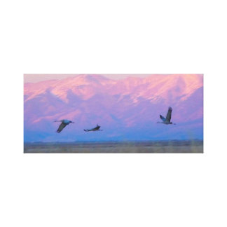 Sandhill Cranes Flying Against Mountains Canvas Print