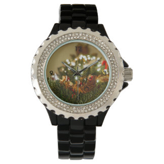 Santa and Sleigh Watch