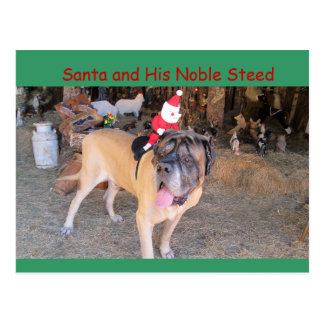 Santa mastiff dog Christmas Postcard Postcrossing