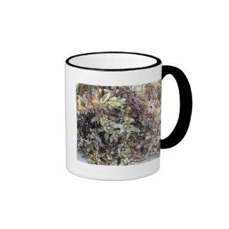 Sargussum seaweed on the beach ringer mug