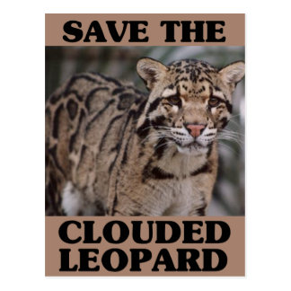 Save the Clouded Leopard Post Card
