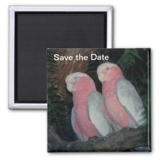Save the Date Magnet Love Birds