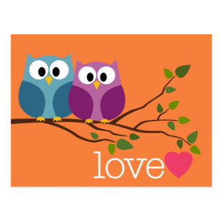 Save the Date with Cute Owl Couple Post Card
