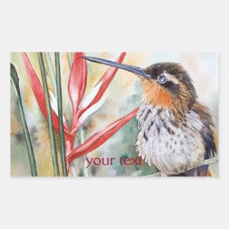 Saw-billed Hermit Hummingbird Rectangular Sticker