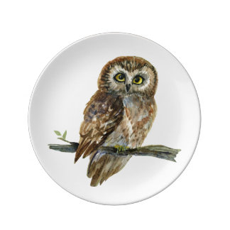 Saw Whet Owl watercolor painting Plate