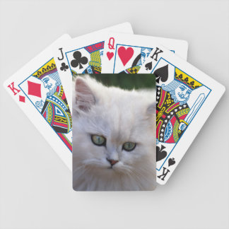 Say what kitten bicycle playing cards