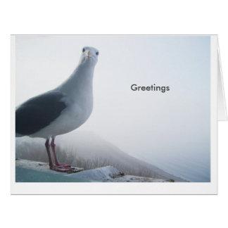 Saying hello. big greeting card