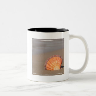 Scallop Shell| Crete, Greece Two-Tone Coffee Mug
