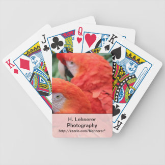 Scarlet Macaw Bicycle Playing Cards