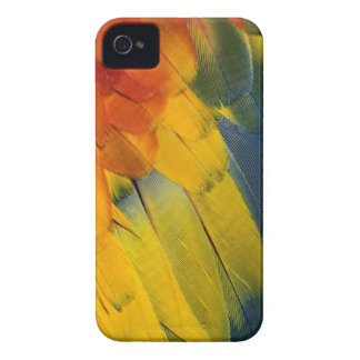 Scarlet Macaw feather pattern, Ara macao iPhone 4 Case-Mate Case
