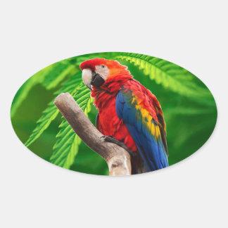 scarlet macaw peace love sticker
