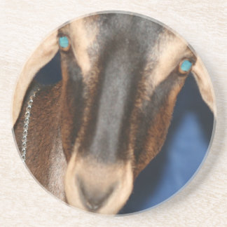 Scary eyed Nubian goat kid head picture Coaster