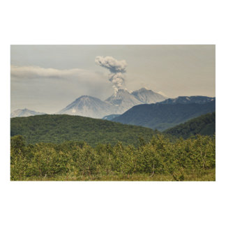 Scenic erupting of Zhupanovsky Volcano. Russia Wood Canvas