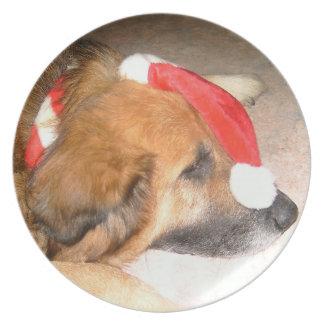 Schäferhund Hund Lustig Weihnachten Christmas Flache Teller