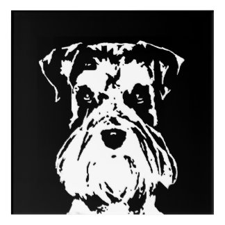 Schnauzer Black & White Acrylic Wall Art