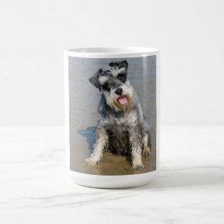 Schnauzer miniature dog cute photo at the beach basic white mug