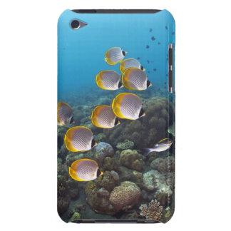 School of angelfish iPod Case-Mate case