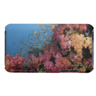 Schooling Fairy Basslets 2 iPod Touch Case-Mate Case