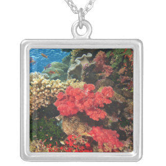 schooling Fairy Basslets  (Pseudanthias 2 Silver Plated Necklace