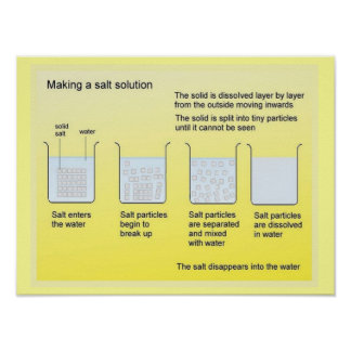 Science, Chemistry, Making a salt solution Poster