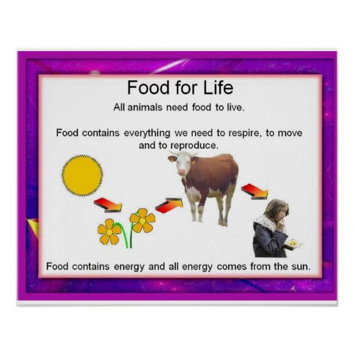 Science, Food for life Poster