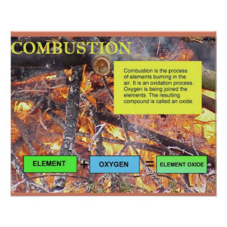 Science, life science, Coombustion Posters