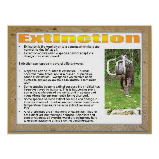 Science, Life science, Extinction of a species Print