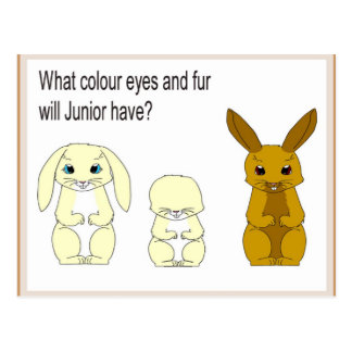 Science, Life Science, What colour eyes and fur? Postcard