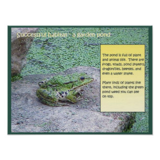 Science, Successful Habitat, Pond Poster