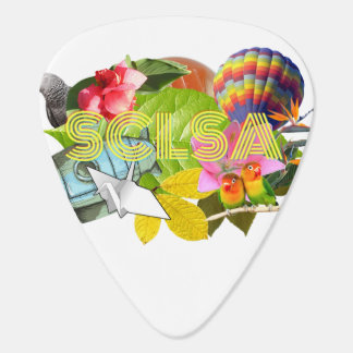 SCLSA Guitar Picks