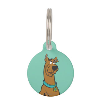 Scooby Doo Pose 27 Pet Nametags