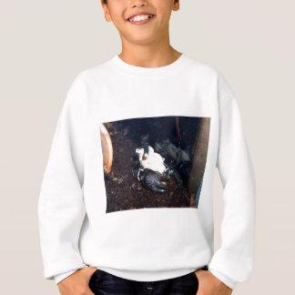 Scorpion Mother and Children Sweatshirt