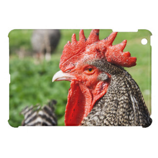 Scots Grey Rooster Photograph iPad Mini Cover