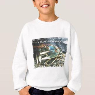 scotti1 sweatshirt