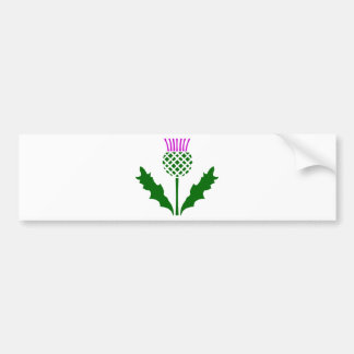 Scottish Thistle Bumper Sticker