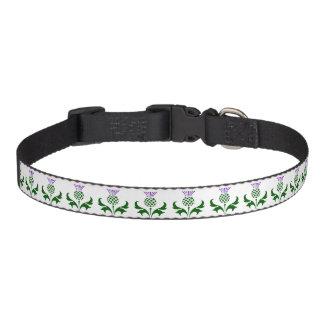 Scottish Thistle Pet Collar