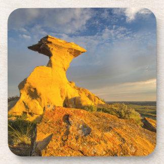 Sculpted Badlands Formation In Short Grass Coaster